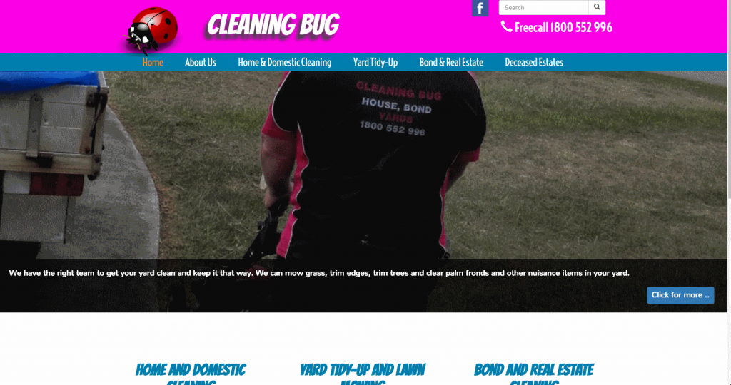 Cleaning Bug - home page. Using their colour scheme and some photos they provided